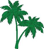 palmazel